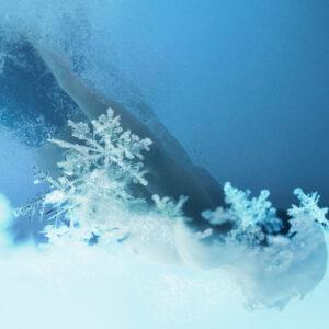 Snowflake. Macro photo of real snow crystal. Beautiful winter ba